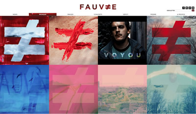 Collectif Fauve